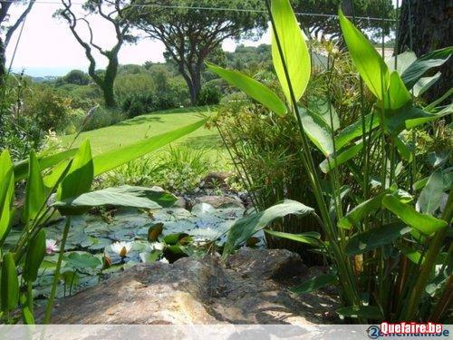 Entretien de jardin - Taille de haies - Abattage...