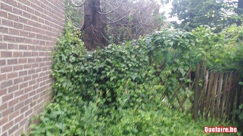 Wendy's garden ,Parc et jardin , prix imbattable .