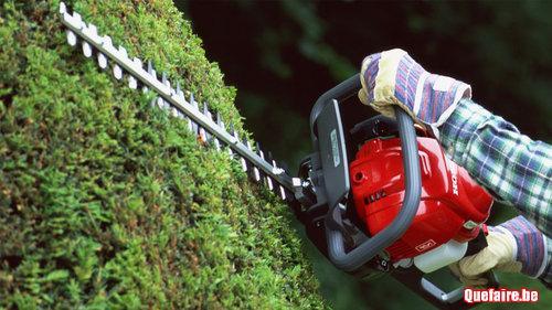 Élagage de vos arbres et entretien de votre jardin