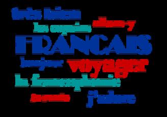 Bijles/les Frans op maat
