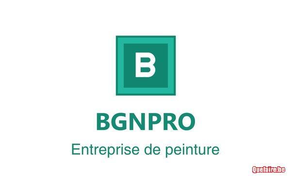 Bgnpro  travaux peinture rénovations 0491745023