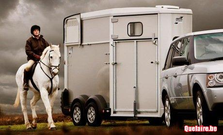 Transport chevaux horse Infinity