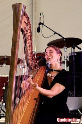 Cours de harpe - La harpe autrement