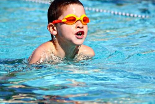 Privé zwemles en watergewenning (Tessenderlo &...